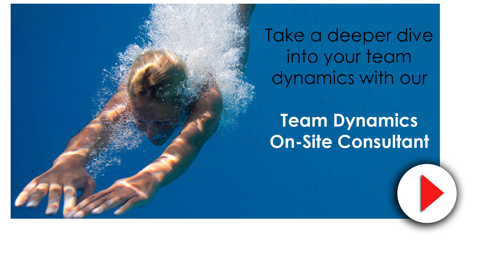 Team Dynamics 2